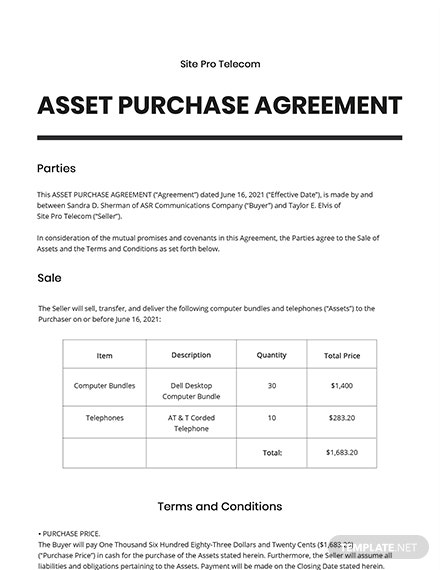 Asset Purchase Agreement For a Telecom Business