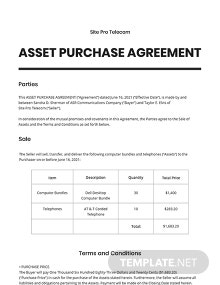 Asset Purchase Agreement For a Telecom Business Template