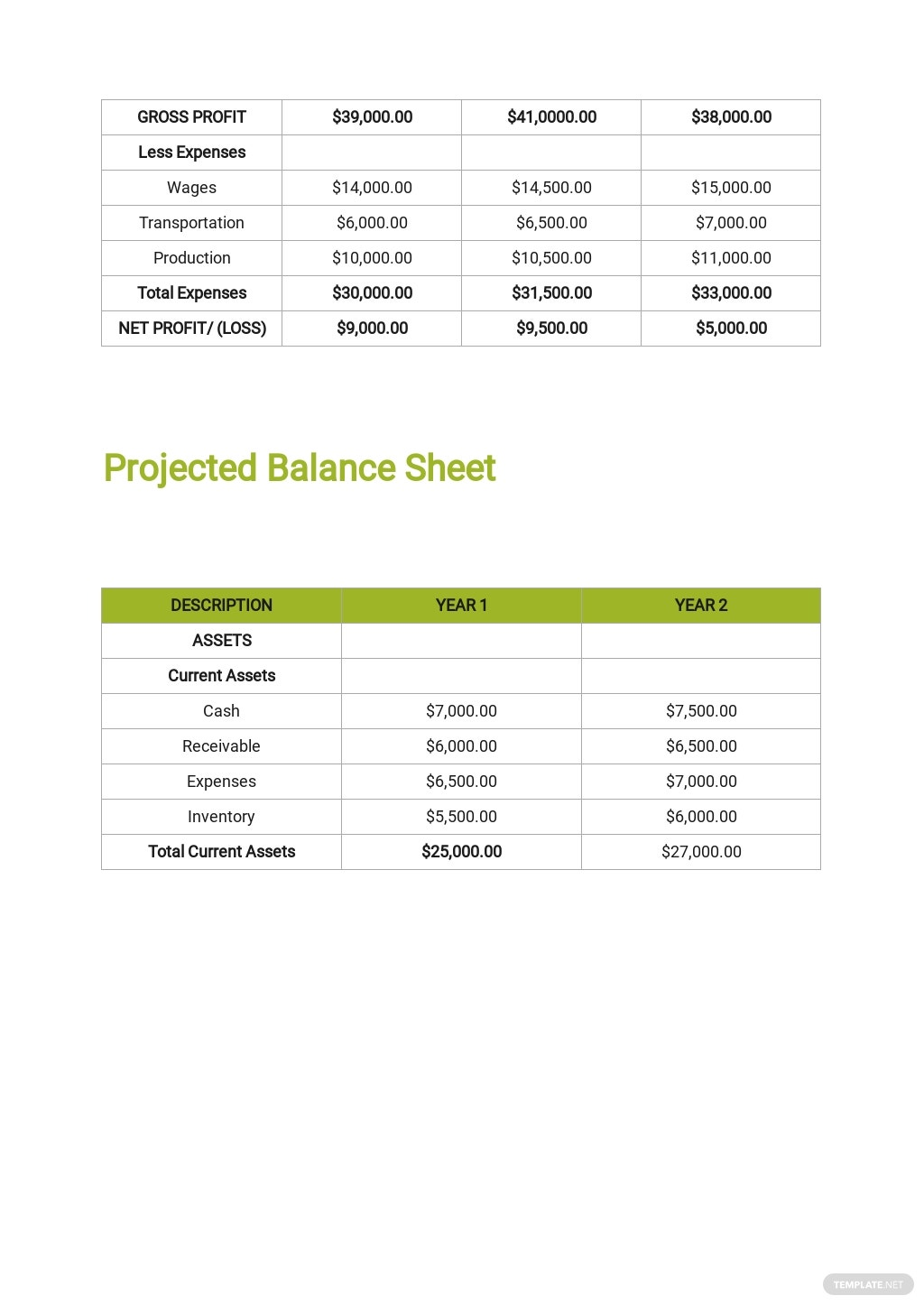 Investment Company Business Plan Template 7.jpe