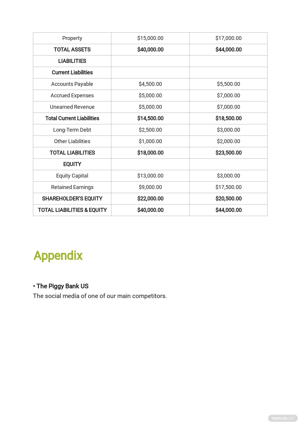 Investment Company Business Plan Template 8.jpe