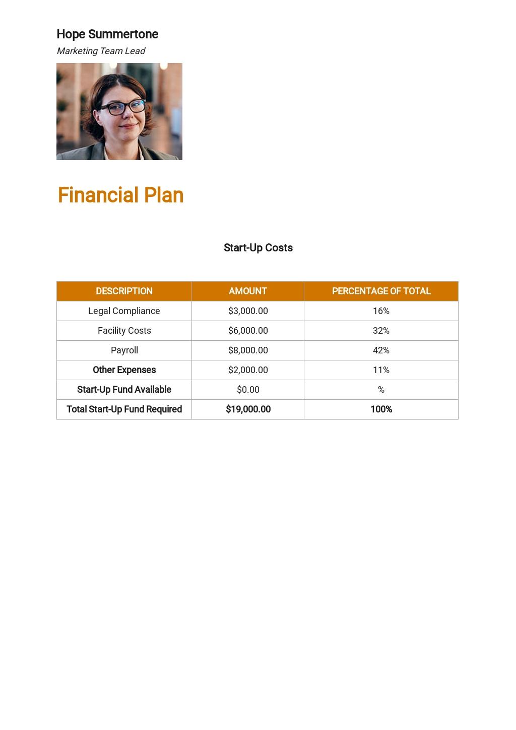 Technology Startup Business Plan Template 5.jpe