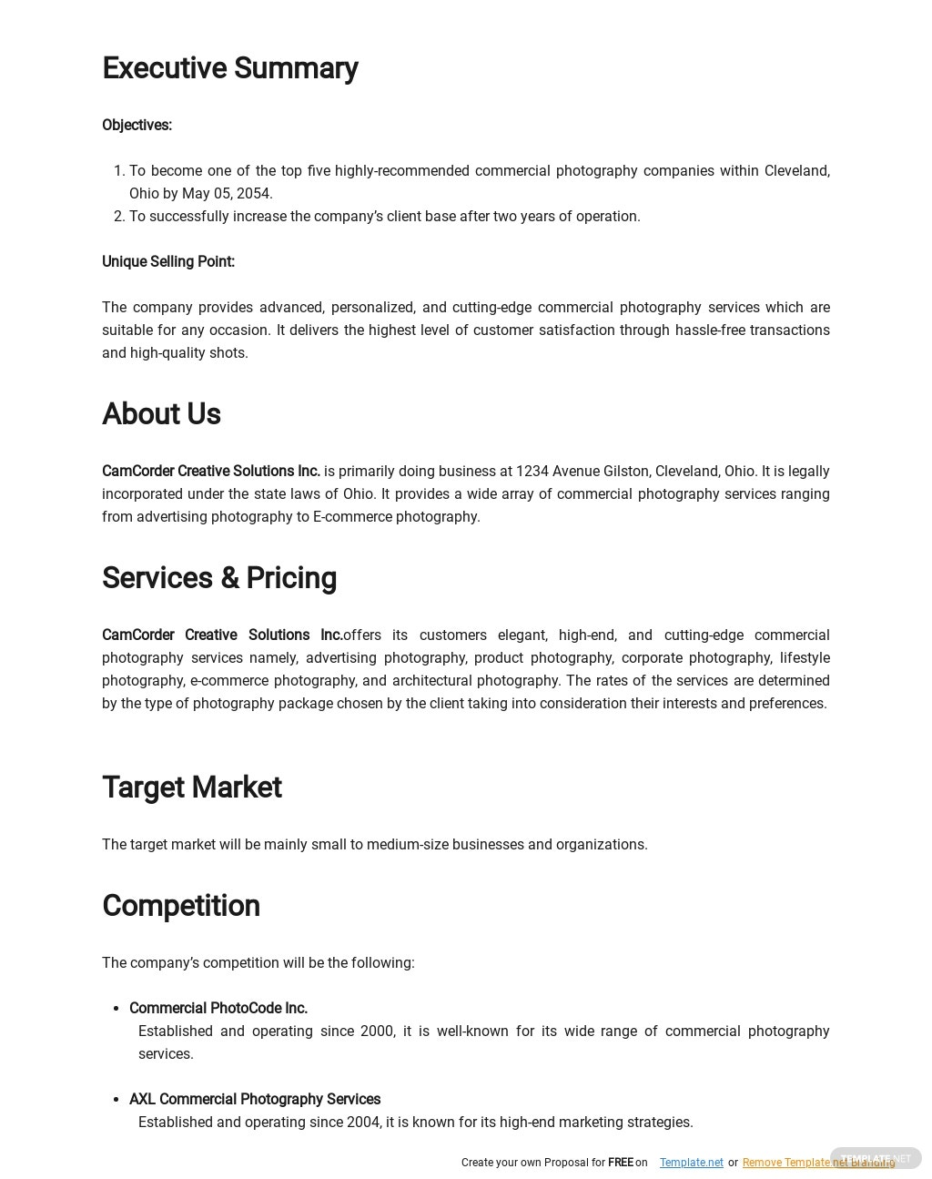 Commercial Photography Business Plan Template 1.jpe