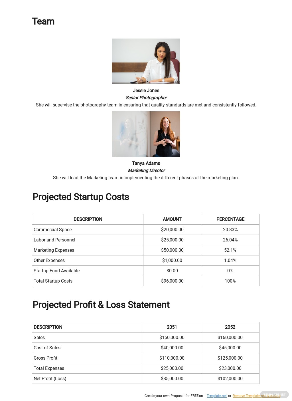 Commercial Photography Business Plan Template 3.jpe