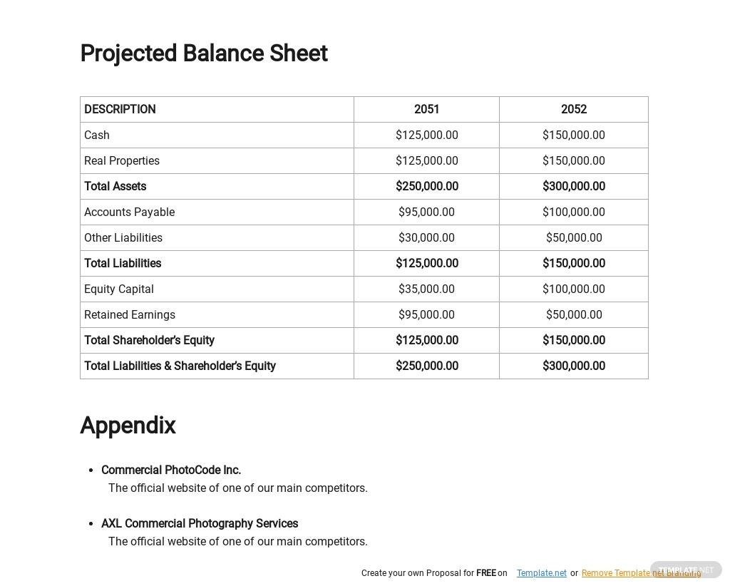 Commercial Photography Business Plan Template 4.jpe