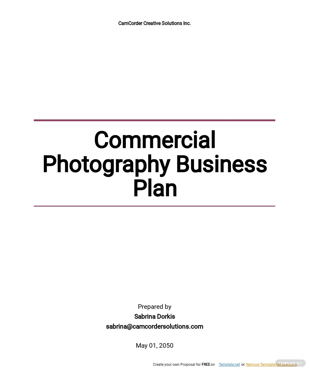 Commercial Photography Business Plan Template.jpe