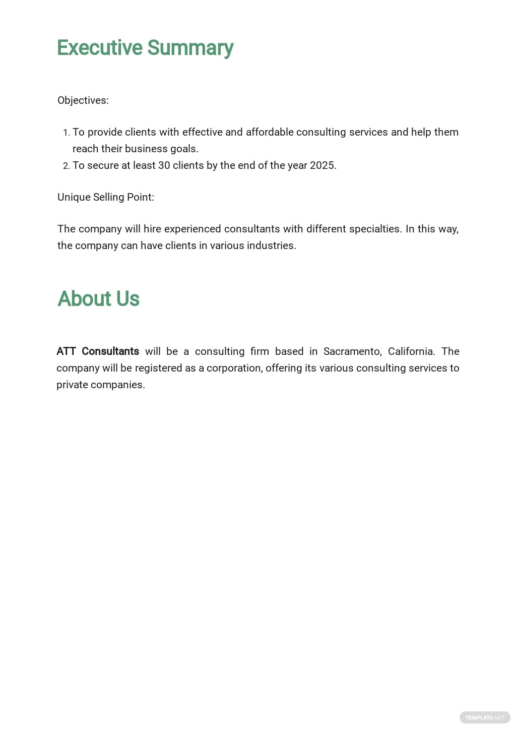 Consulting Business Plan Template 1.jpe