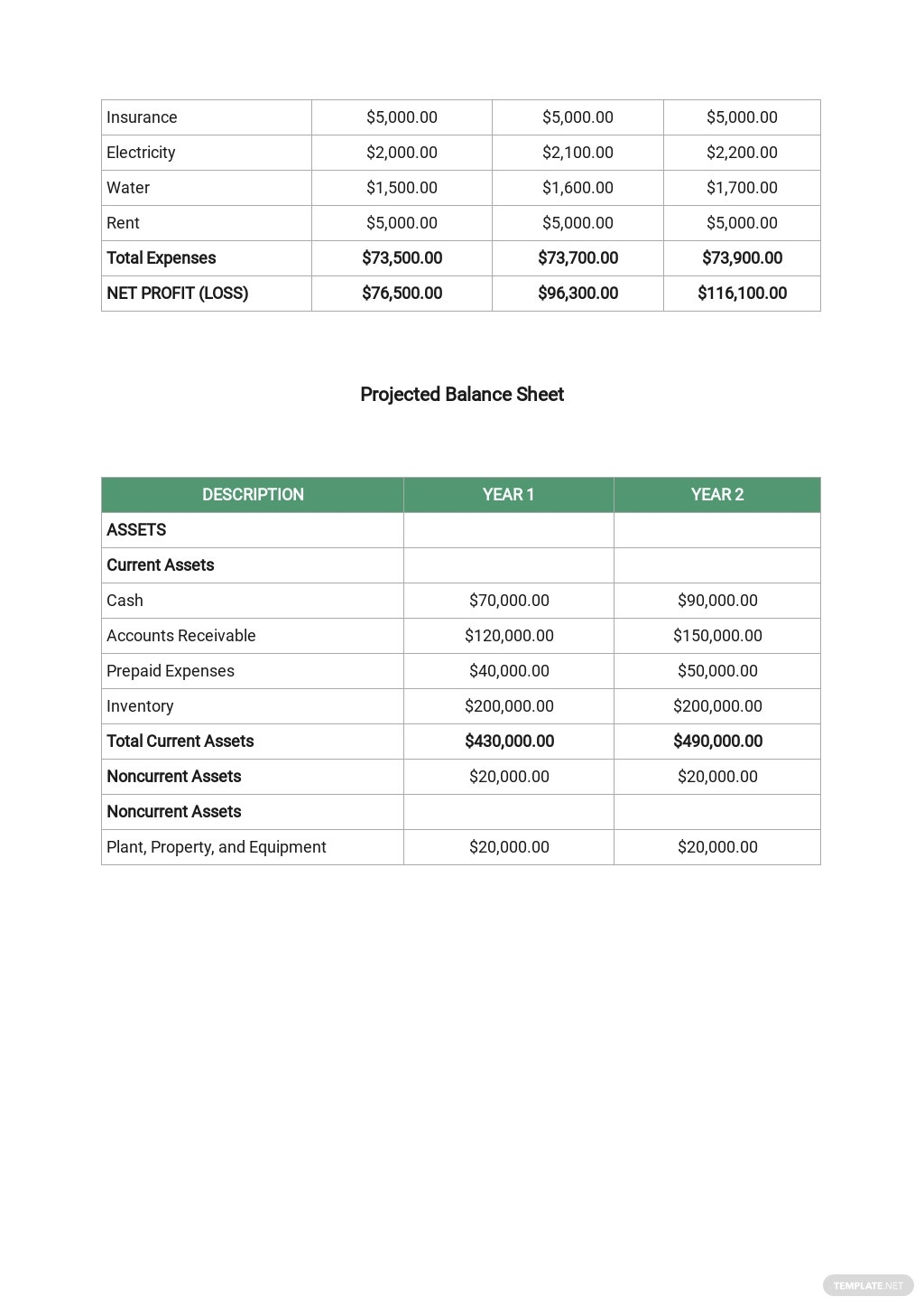 Consulting Business Plan Template 8.jpe