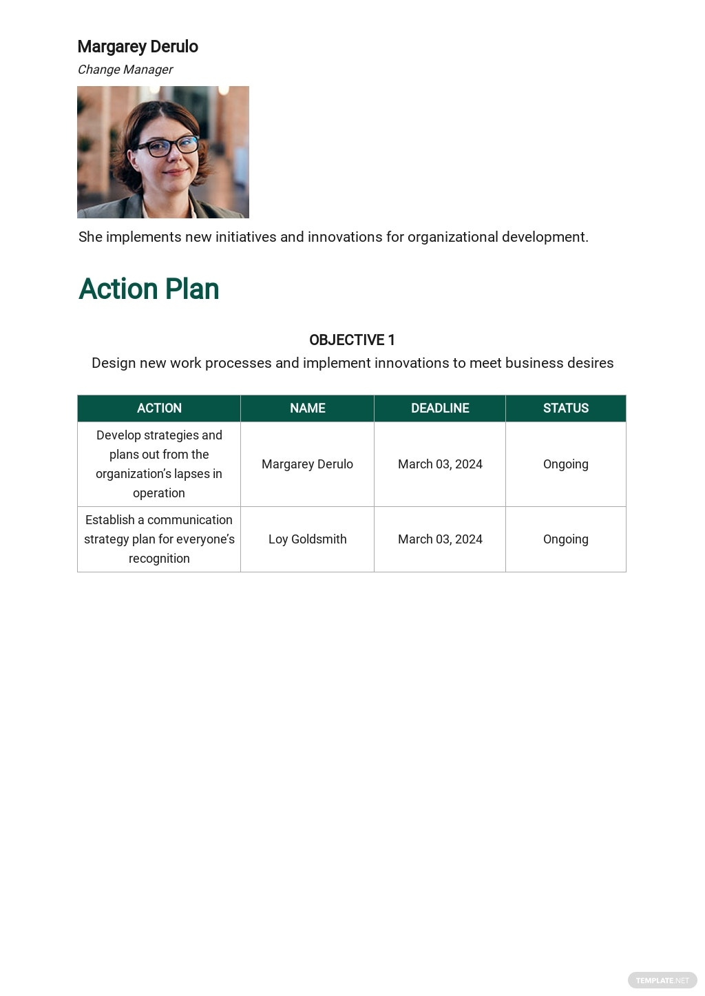 Organizational Change Management Plan Template 2.jpe