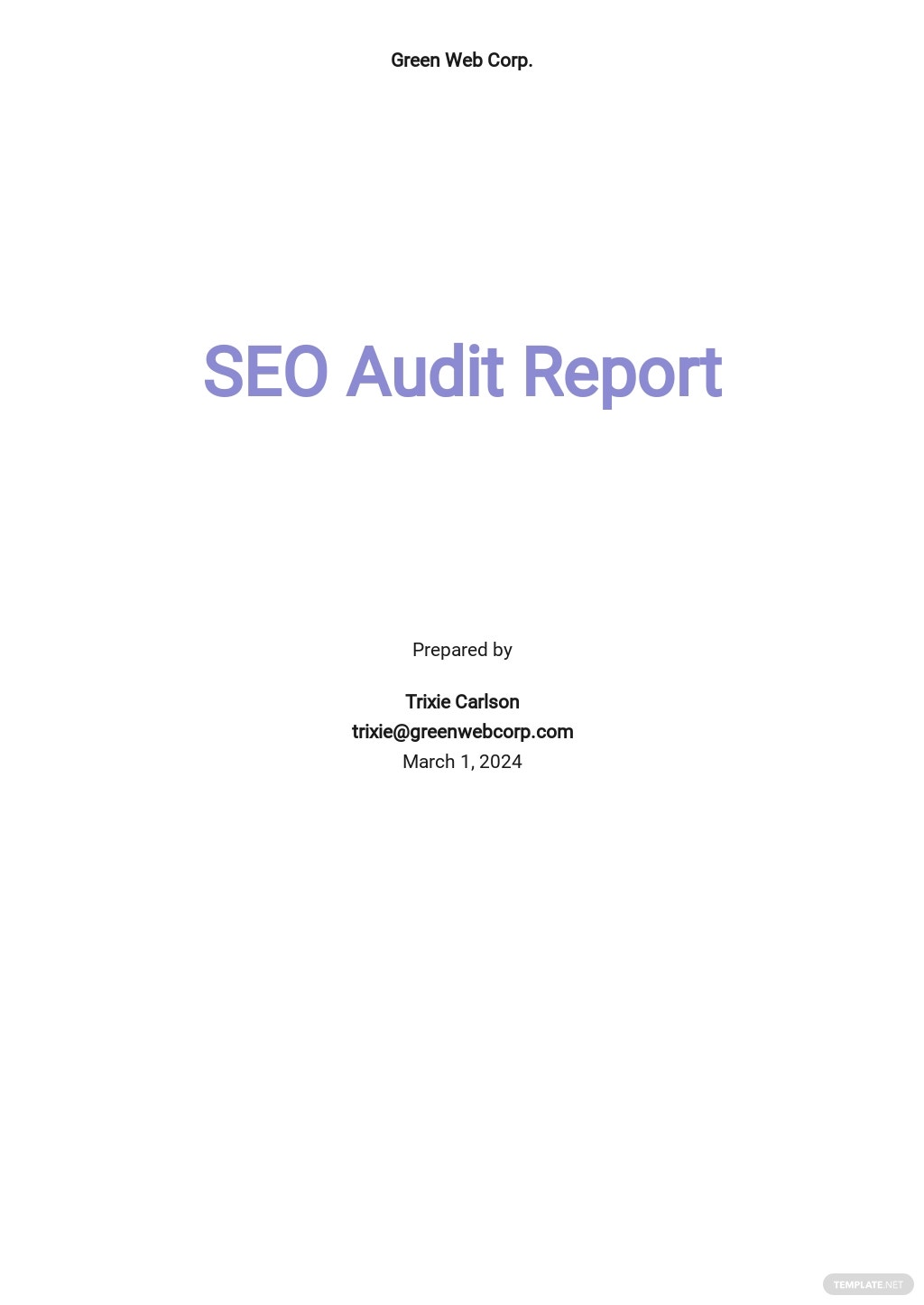 SEO Audit Report Template.jpe