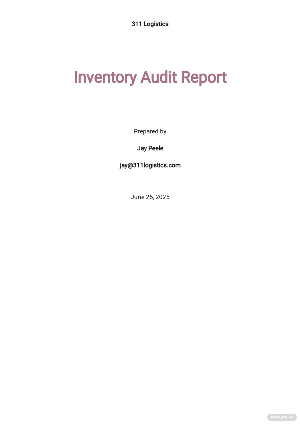 Inventory Audit Report Template [Free PDF] - Google Docs, Word