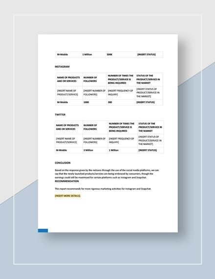 Social Media Marketing Report Download
