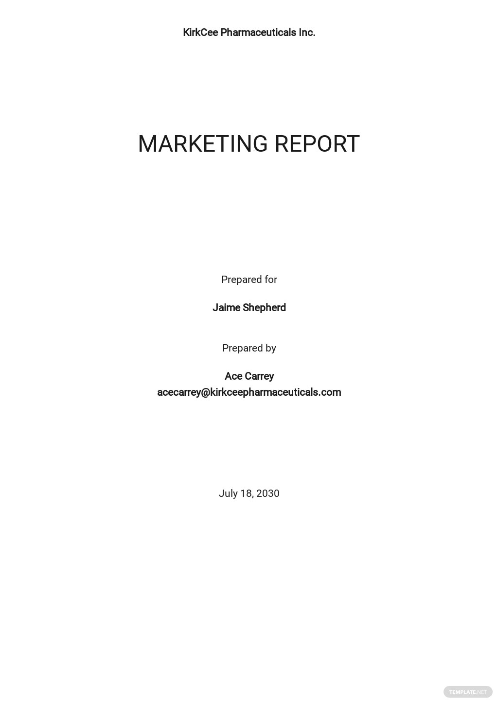 Social Media Marketing Report Template