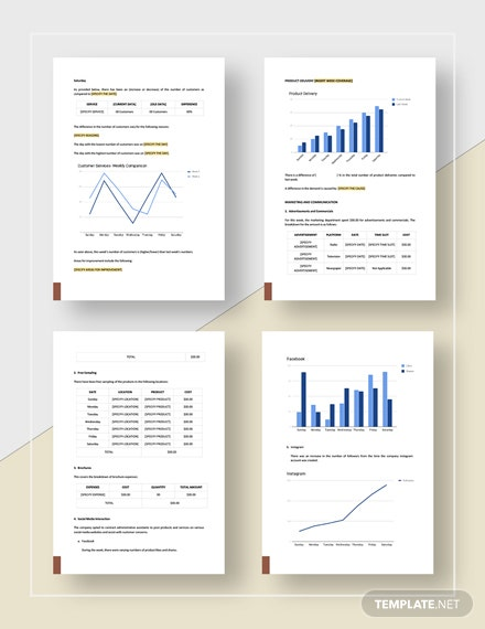 Simple Weekly Business Report