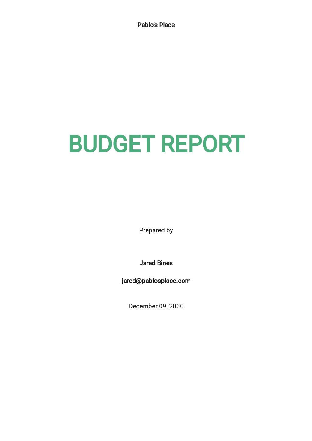 Budget Report Template [Free PDF] - Google Docs, Word