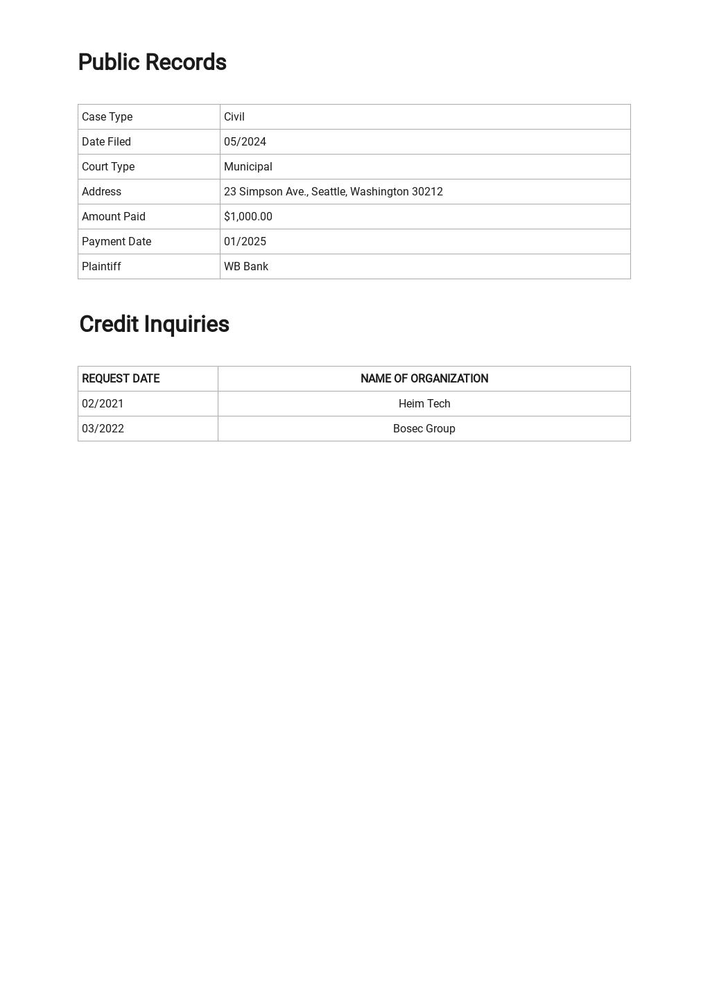 Credit Report Template 3.jpe