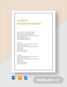 Student Internship Report Template