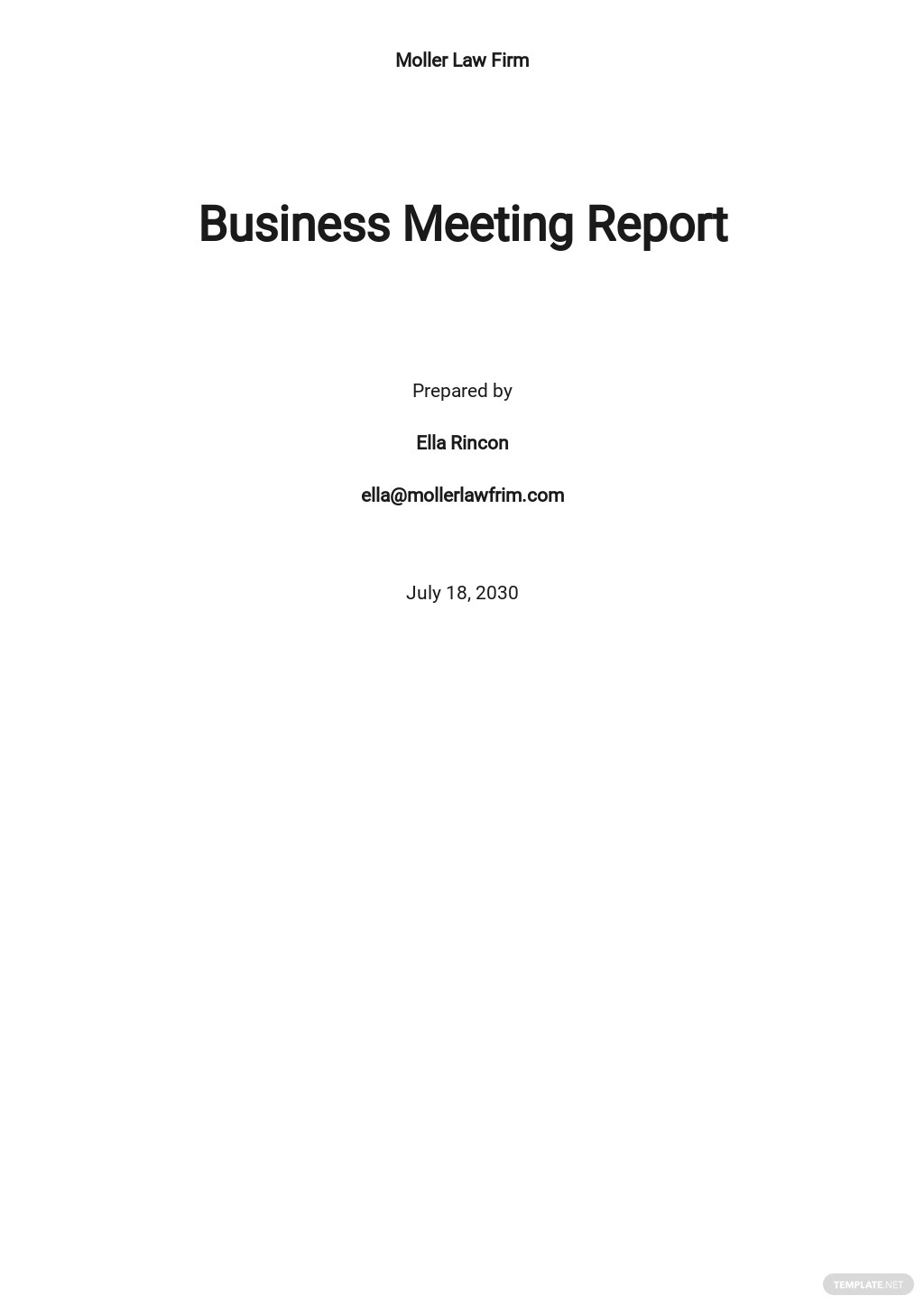 Business Meeting Report Template
