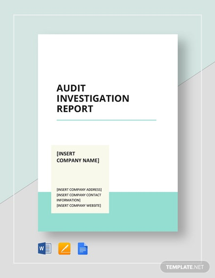 audit investigation report