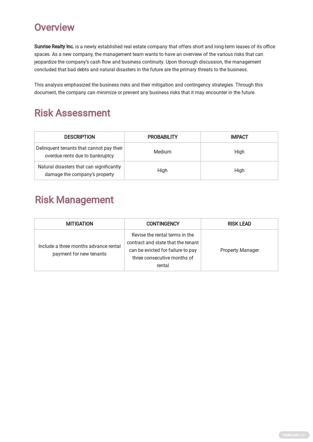 Business Risk Analysis Template 1.jpe