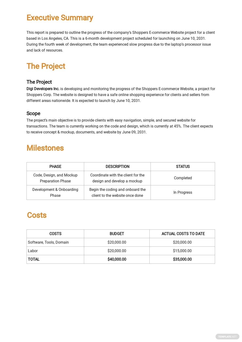 Project Summary Report Template 1.jpe