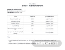 Inventory Report Template
