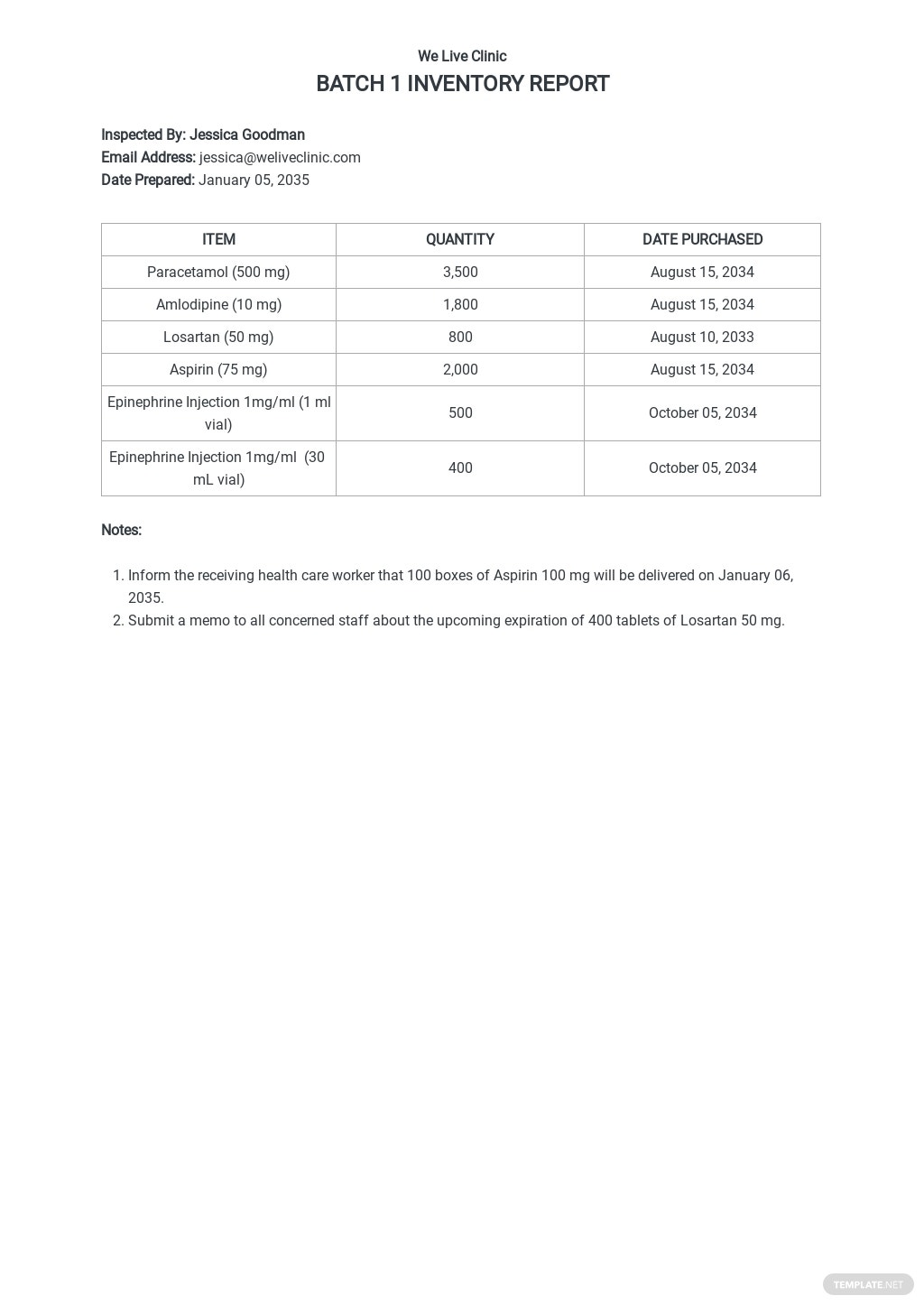 Inventory Report Template.jpe