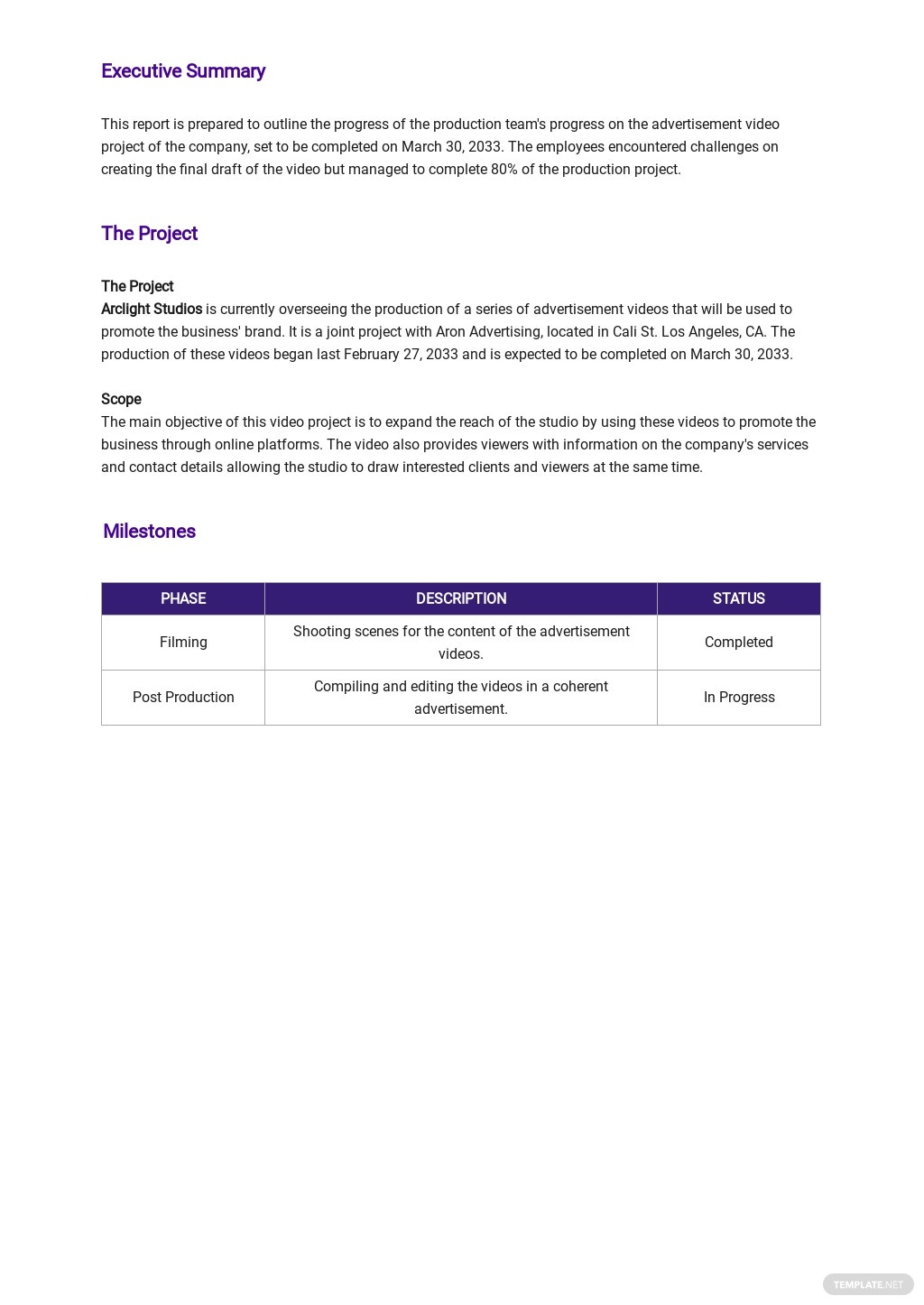 Project Weekly Status Report Template 1.jpe