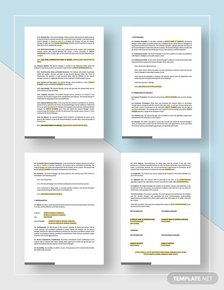 Simple General Manager Employment Contract