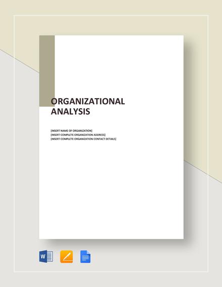 Organizational Analysis Template