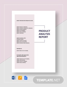 Product Analysis Report Template