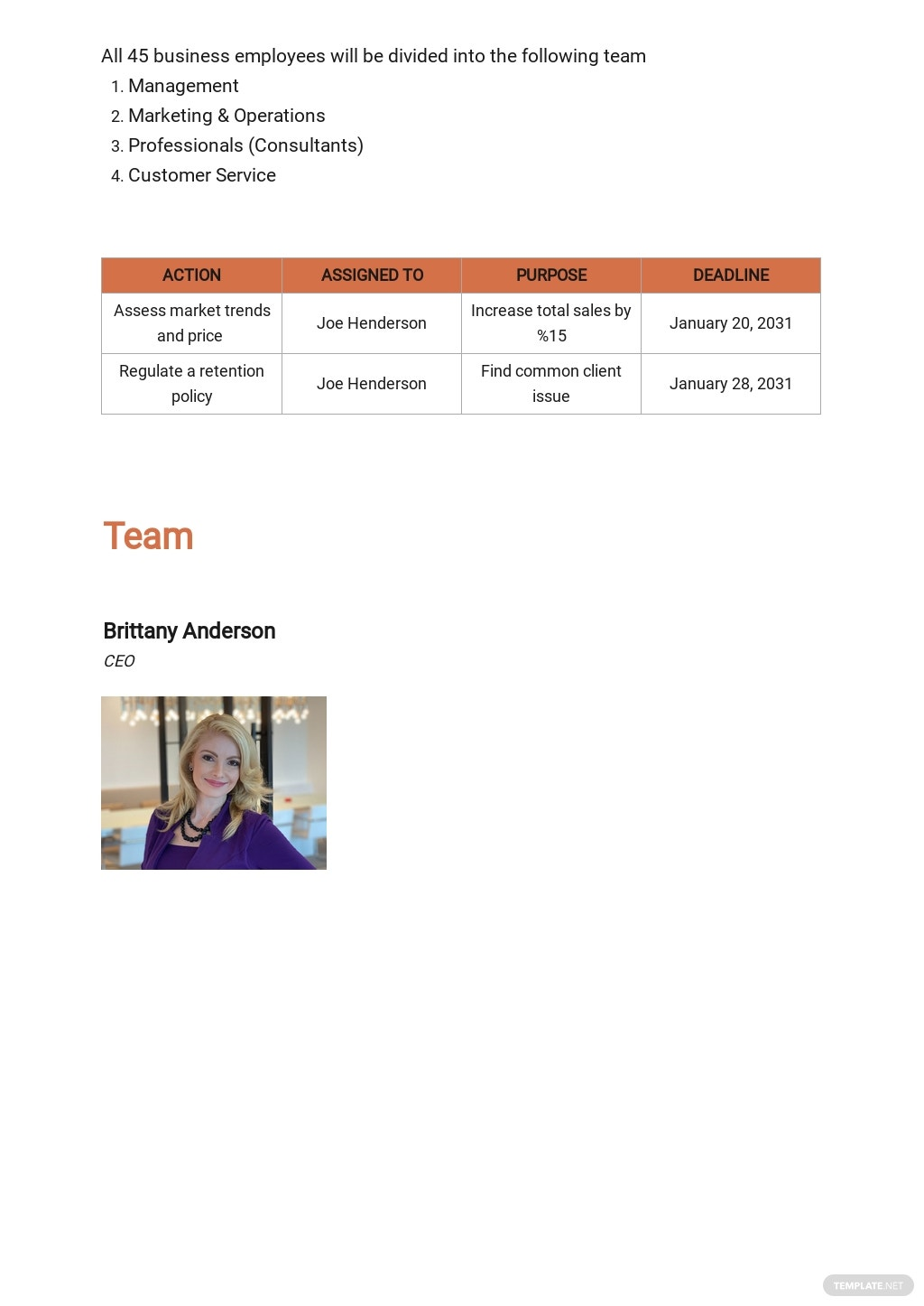 Human Resources Consulting Business Plan Template 5.jpe