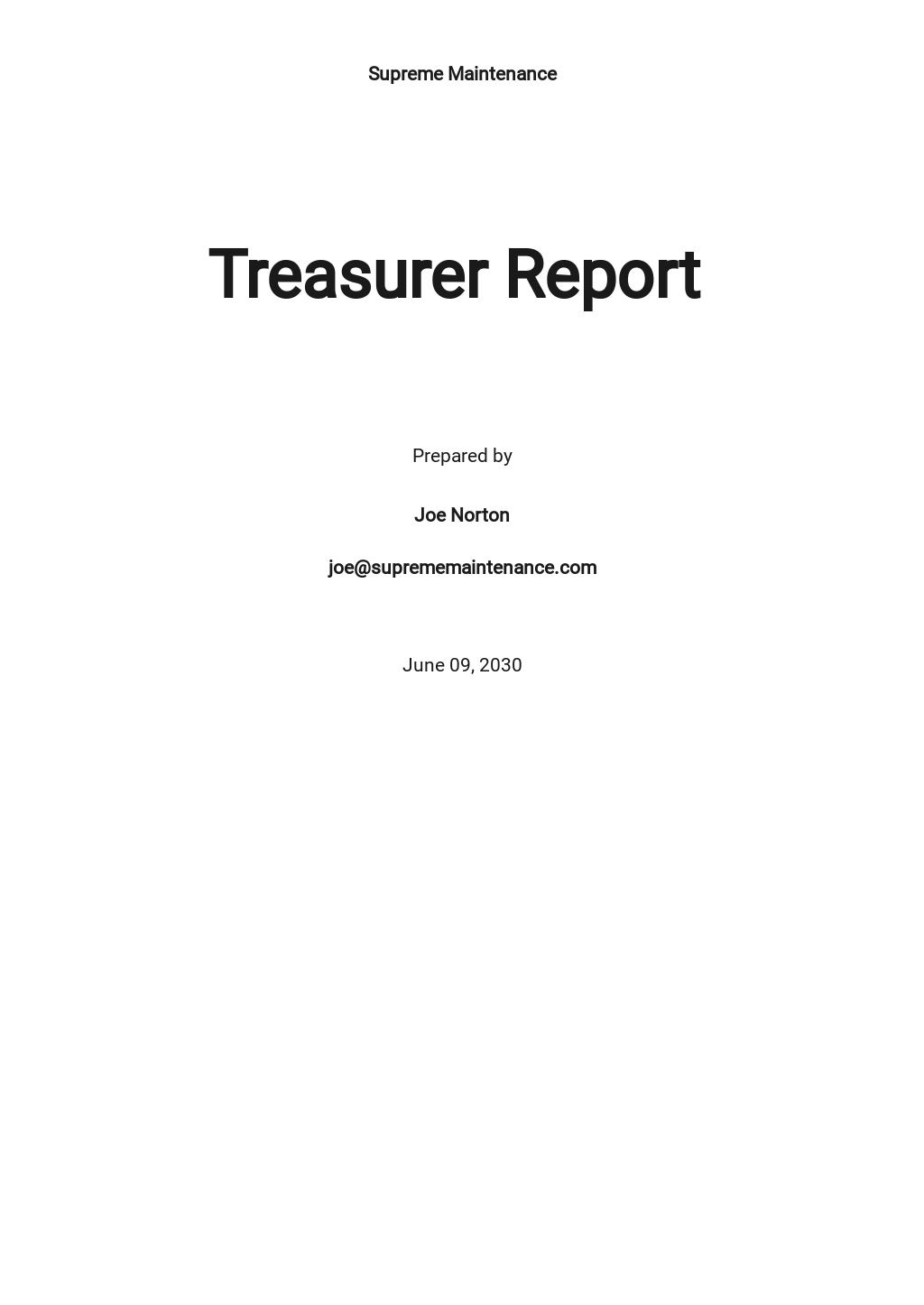 Treasurer Report Template.jpe