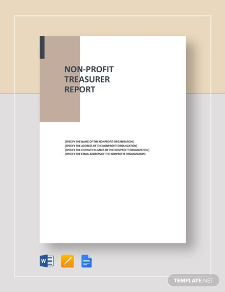 non profit treasurer report