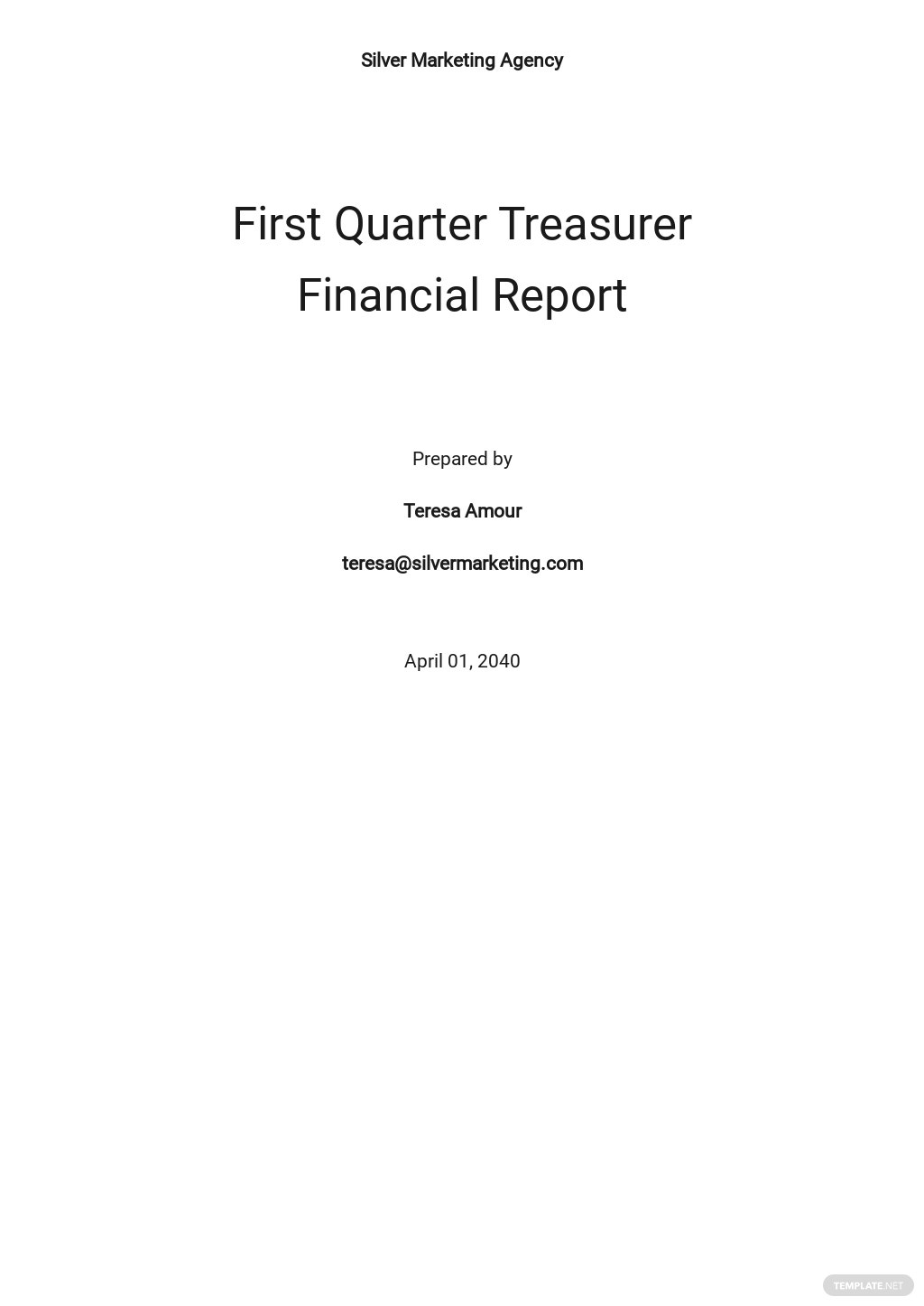 Treasurer Financial Report Template.jpe