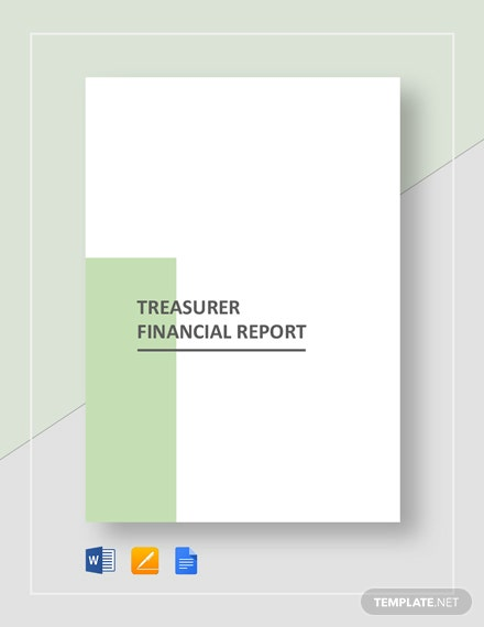 treasurer financial report