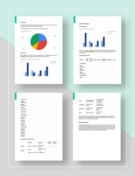 Basic Sample Marketing Situation Analysis