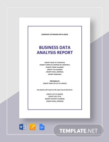 Business Data Analysis Report Template