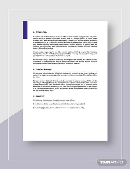 Sample Business Data Analysis Report