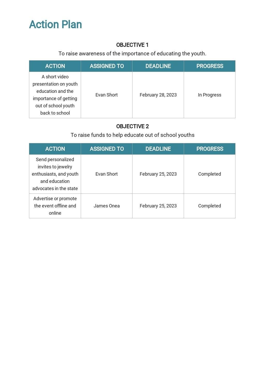 Non Profit Fundraising Plan Template 3.jpe
