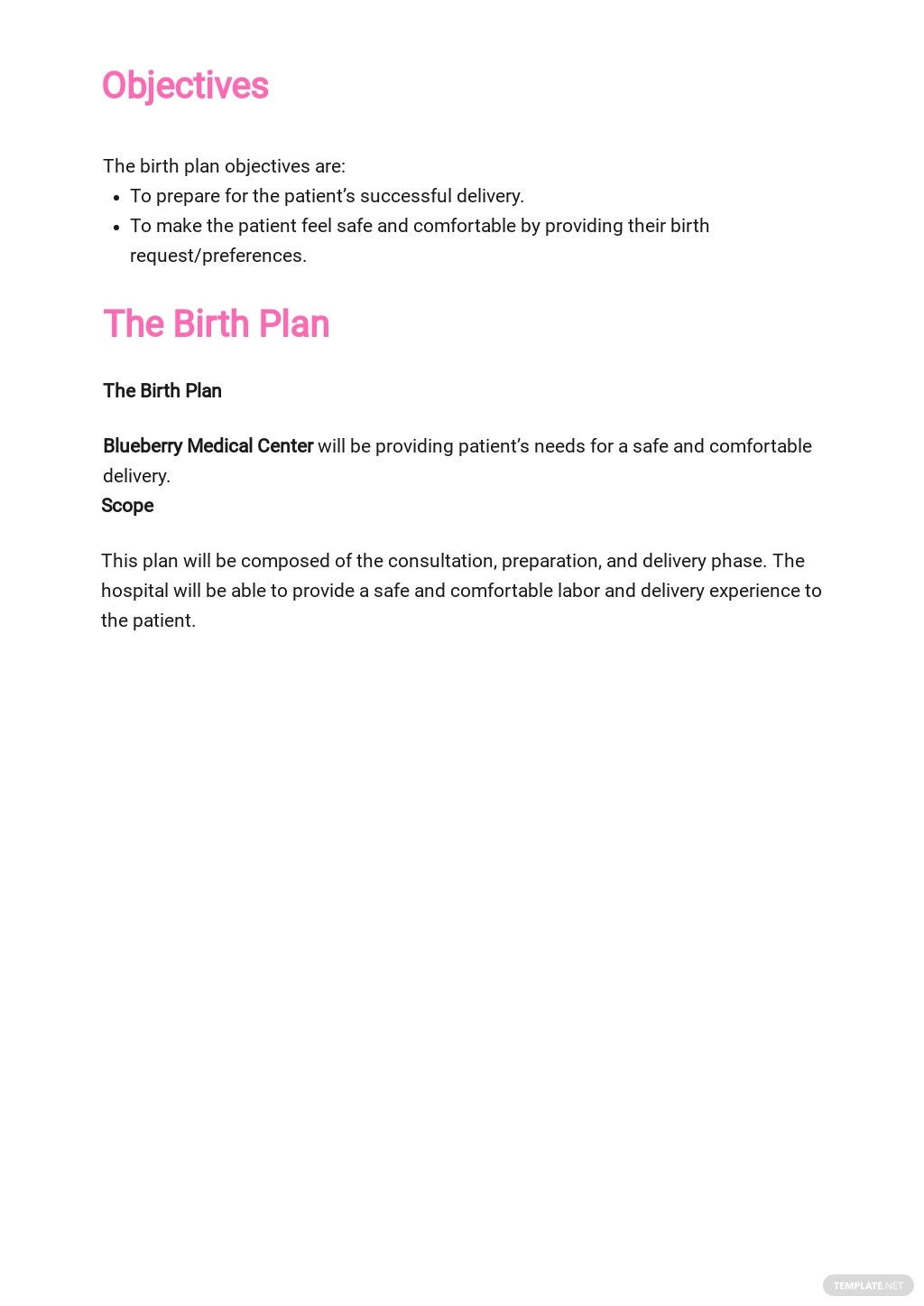 Birth Plan Template 1.jpe