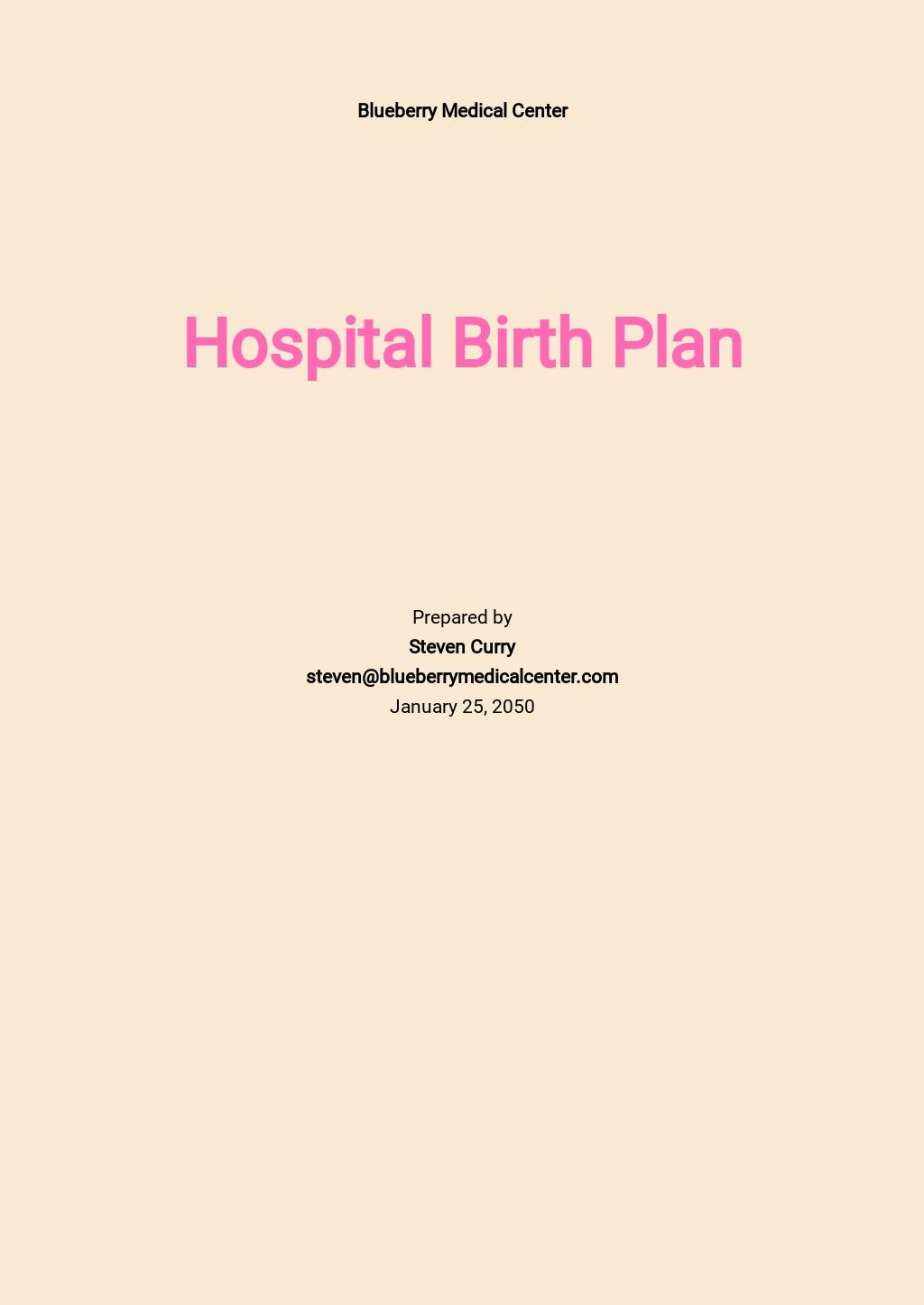 Birth Plan Template.jpe