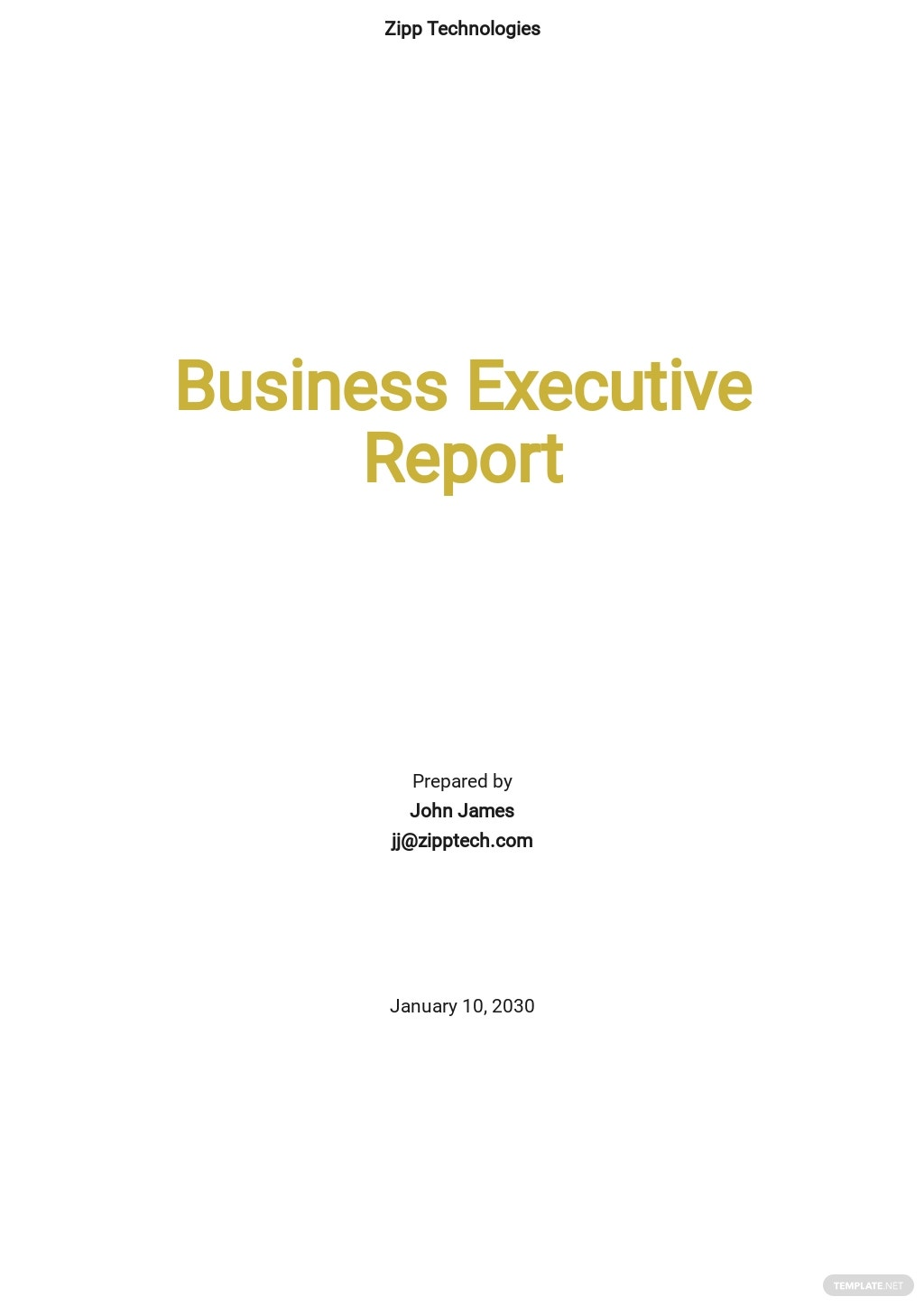 Business Executive Report Template