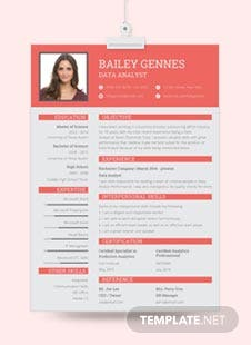 Free Data Entry Resume Template
