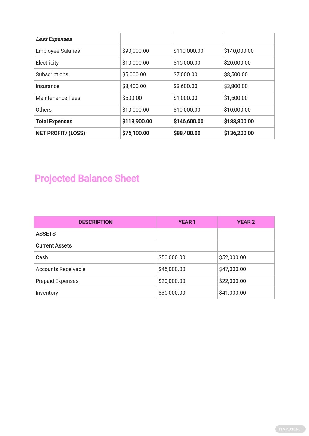 Food Delivery Business Plan Template 7.jpe