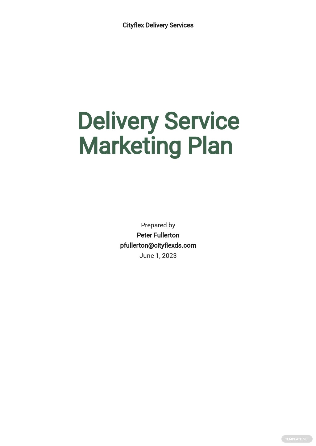 Delivery Service Marketing Plan Template