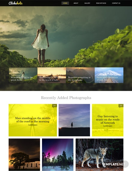 Clickaholic HTML5/CSS3 Website Template