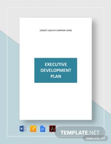 Executive Development Plan Template