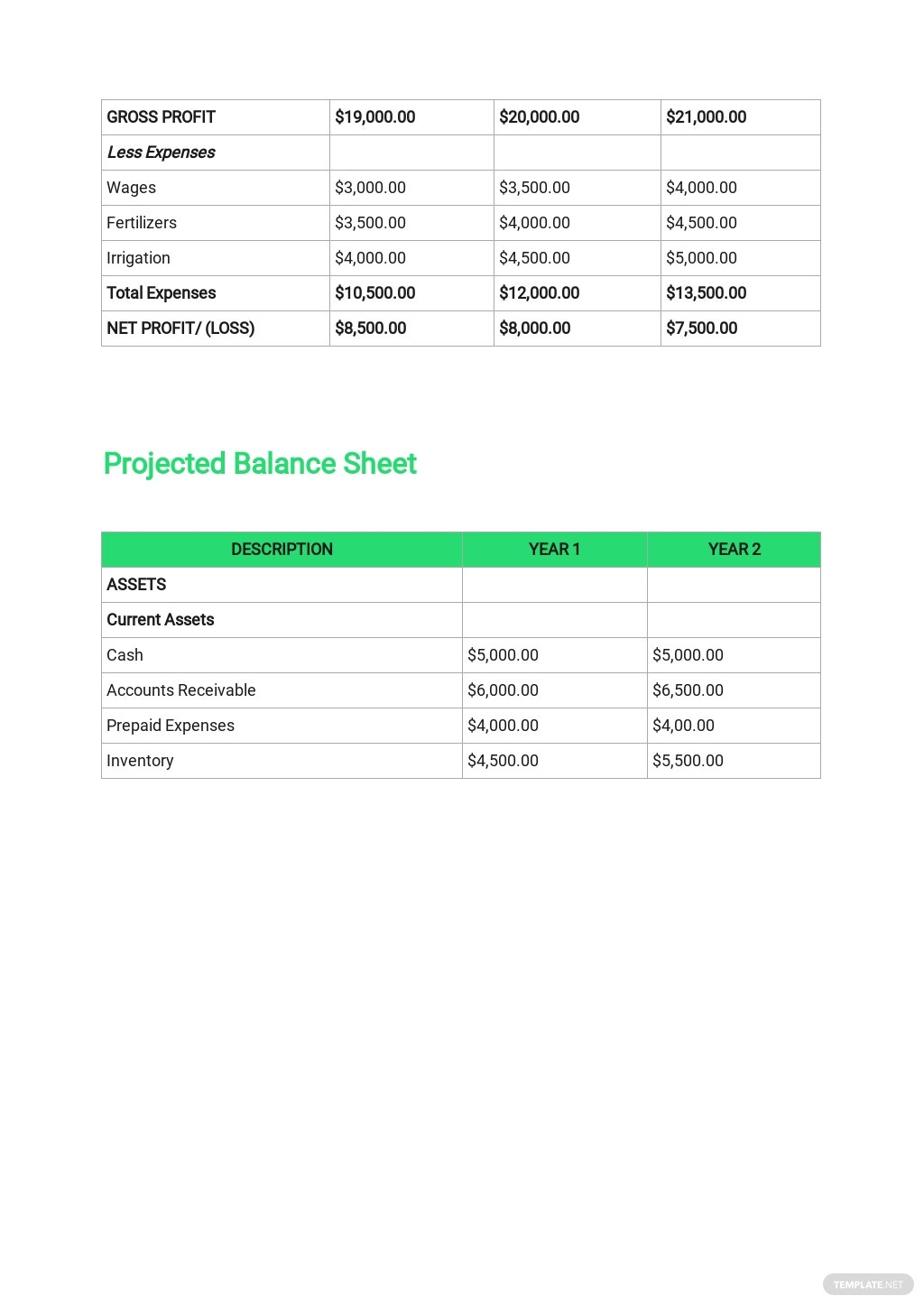 Agriculture Business Plan Template 8.jpe