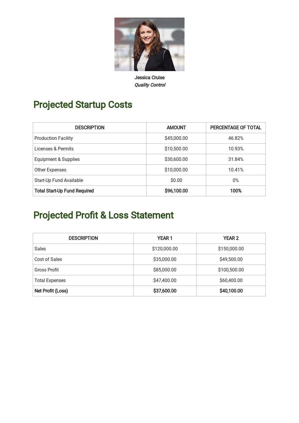 Lean Business Plan Template 3.jpe