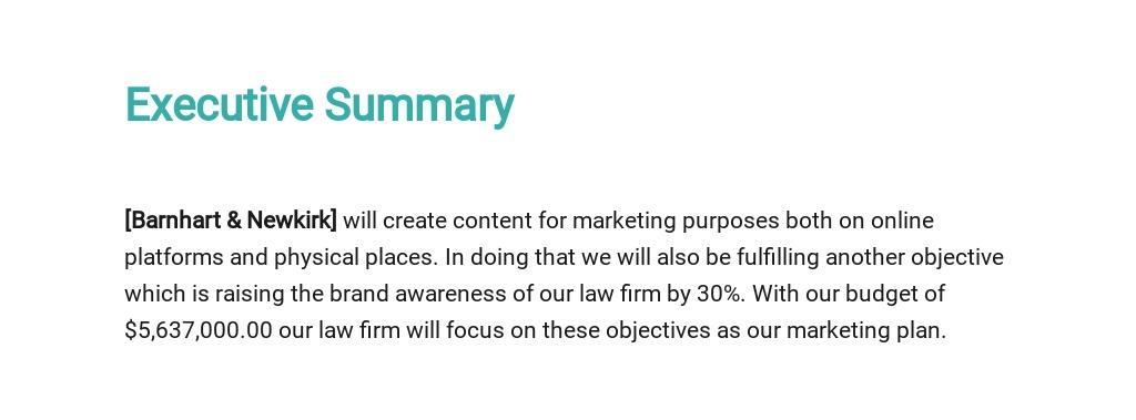 Law Firm Marketing Plan Template 1.jpe